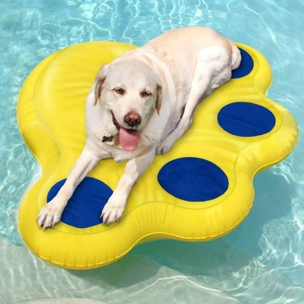 2. Dogs don't want to be left out when it comes to pool time this raft is puncture proof so their claws won't cause it to capsize