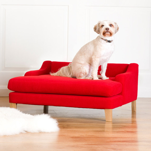 9. A lounger for the dog who always wants to look like she's posing for a portrait.